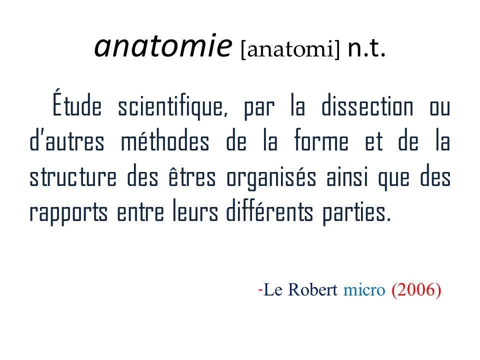 anatomie [anatomi] n.t.